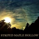 Striped Maple Hollow - Happy Together