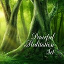 Buddhist Meditation Music Set - Gold Shadows on the Wall