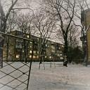 Голое Солнце - Снег