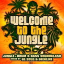 Welcome To The Jungle: The Ultimate Jungle Cakes Drum & Bass Com...
