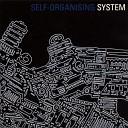 Self - Organising System