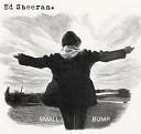 Ed Sheeran - Small Bump (Dennis Dohl Edit)