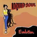 Liquid Soul - Mercedes