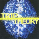 Trip Theory - Fip The Track