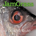 JamGrass Slammers - Fast Enough for You
