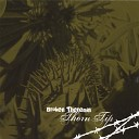Broken Theremin - Dreams Weren t Meant To Stay