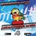 Птицы (Struzhkin & Vitto Remix)