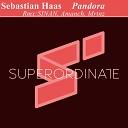 Sebastian Haas SINAN - Pandora SINAN Rmx