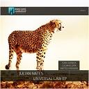 Julian Nates - Universal Law