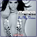 Teknova Feat Mellina - In My Veins