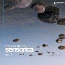 Sensorica - Credo Ut Intelligam