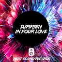 DJ Piksen - In Your Love Original Mix
