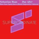 Sebastian Haas Temporarily Unknown - Pandora Temporarily Unknown Rmx