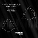 Raul Young - Singular Vibration CVRDWELL Remix