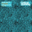 Allen Watts - Polarize Daniel Skyver Remix