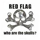 Who Are The Skulls?