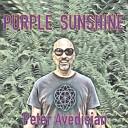 Peter Avedisian - Clear Waters
