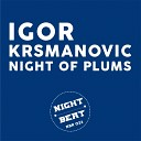 Igor Krsmanovic - Night Of Plums Original Mix