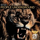 Netzik Tonal Grooves - People Underground Tonal Grooves Deep Tech Dub