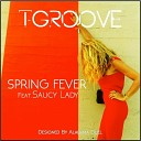T Groove feat Saucy Lady - Spring Fever Instrumental Mix