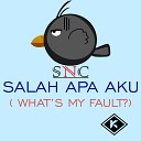 SNC - Salah Apa Aku What s My Fault Original Mix