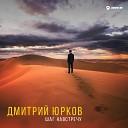 Дмитрий Юрков - Штрихи