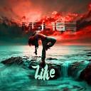 MSL16 - Like