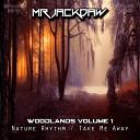 Mr Jackdaw feat Beatciter - Take Me Away Original Mix