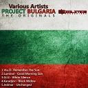 Vla D - Remember The Sun Original Mix