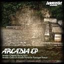 Ryo - Arcadia Gates Of Arcadia Remix