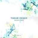 Timur Demix - Falling Skies