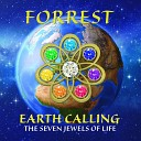 Forrest - Emerald Asia