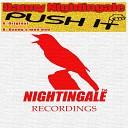 Danny Nightingale - Push It Original Mix