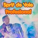 Profesional - Lasa Ma In Pace