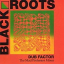 Dub Factor - The Mad Professor Mixes