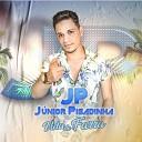 Junior Pisadinha - Vida de Farra