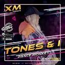 Tones And I - Dance Monkey Amice Remix