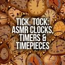 ASMR Sound Studio - Grandfather Clock Ticking in a Quiet Hallway