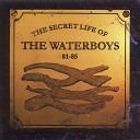 The Waterboys - Don t Bang the Drum BBC Radio 1 Session 20 November 1985