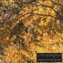 John Aldington - Get Back Home