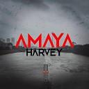 Amaya - Harvey