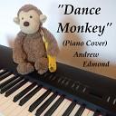 Andrew Edmond - Dance Monkey