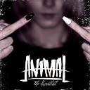 Animal - Mr Knowitall
