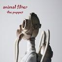 Animal Filter - Superstition