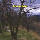 Arctic Soul - Night Hawk