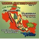 Los Tornados de San Luis - Camarada de San Luis