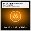 A R D I and Cynthia Hall - Sunflowers Mode Pelar Remix