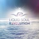 Liquid Soul - P l u r