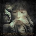 KastomariN - Two Wings