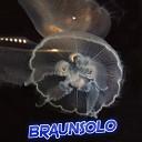 Braunsolo - Bass Time